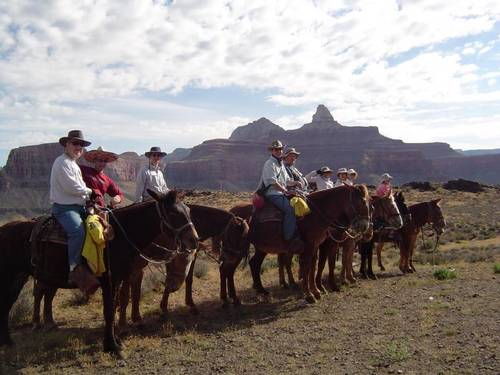 You can ride mules to the bottom of the Grand Canyon on the Bright Angel Trail! The cowboy on the left wearing the Akubra is me.