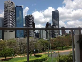 Picture of home available for House Exchange at Aussie House Swap, Australia. Location Kangaroo Point, QLD