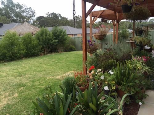 Home Exchange In Maiden Gully Bendigo Vic Aussie House